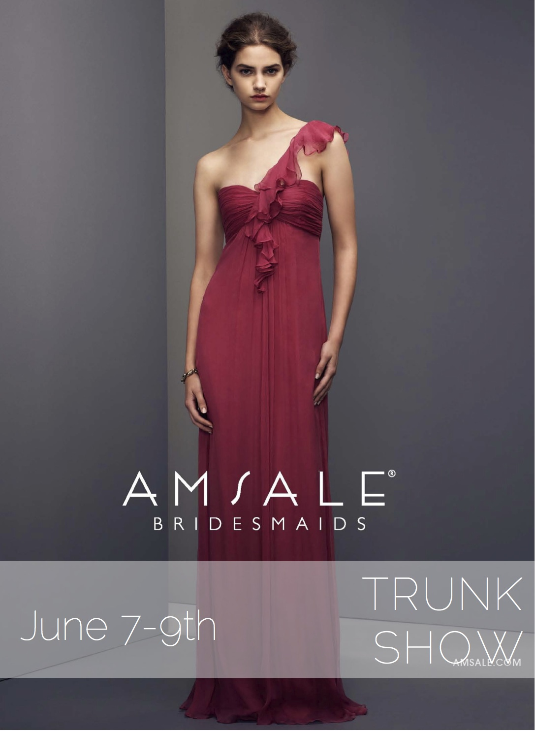 Amsale Bridesmaid Trunk Show