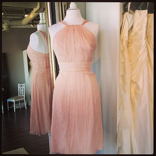 Chiffon Amsale Bridesmaid Dress, available at Ready or Knot for the Amsale Trunk Show