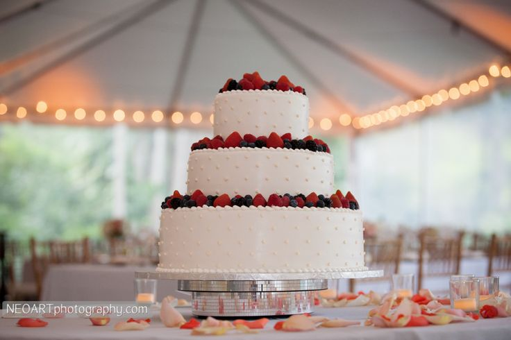 Wedding Cakes Pinterest Picks Ready Or Knot Omaha Bridal Shop - Fresh Fruit Wedding Cake
